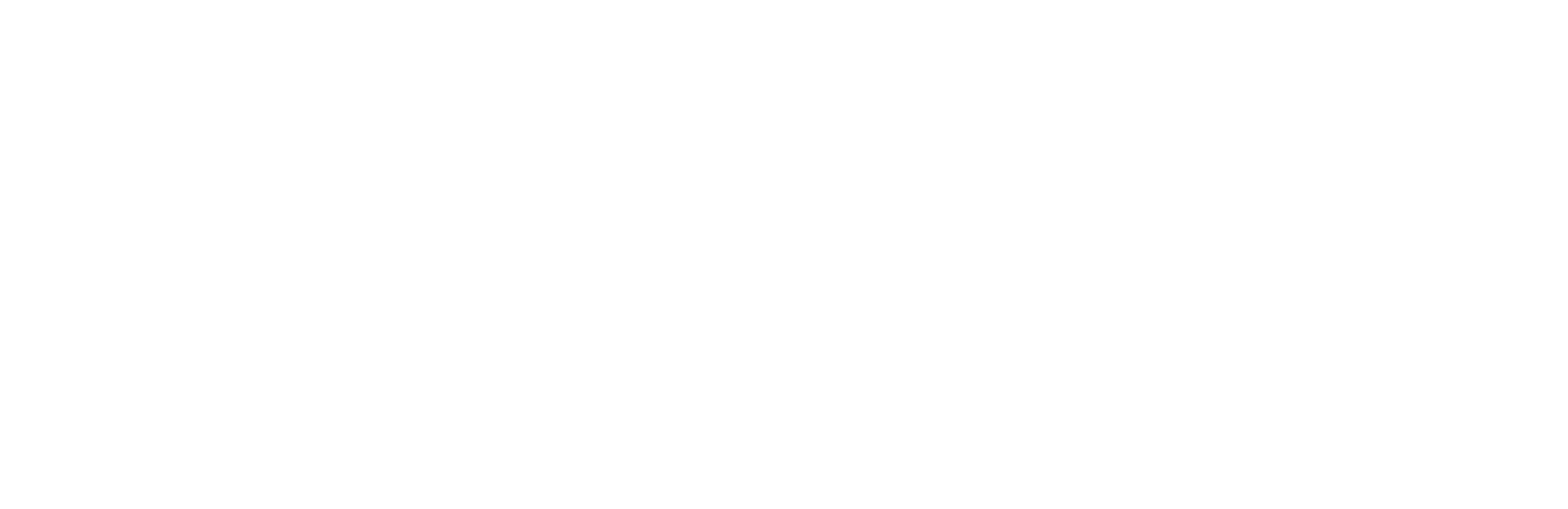 Arenal VFX Logo
